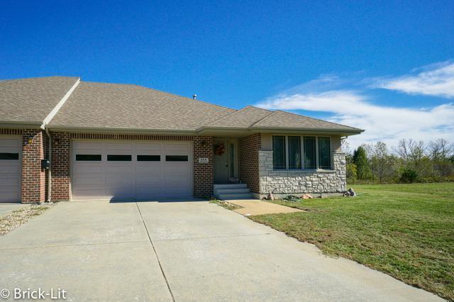 322 River Run Drive, St. Anne, IL 60964 (MLS #10114287) :: Ani Real Estate