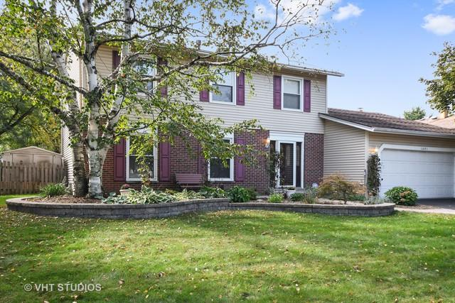 1491 Concord Drive, Downers Grove, IL 60516 (MLS #10114392) :: The Wexler Group at Keller Williams Preferred Realty