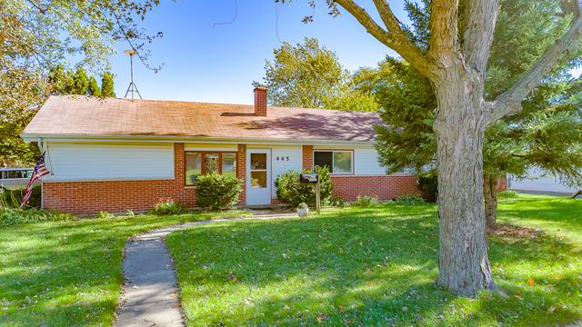 445 Lincoln Drive, Hoffman Estates, IL 60169 (MLS #10114861) :: The Dena Furlow Team - Keller Williams Realty