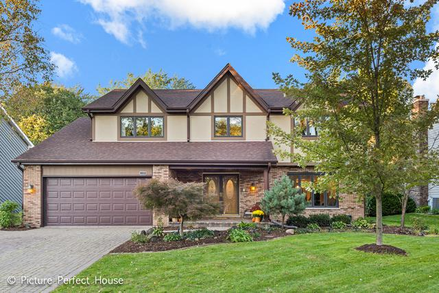 2320 Oak Hill Drive, Lisle, IL 60532 (MLS #10114921) :: The Dena Furlow Team - Keller Williams Realty