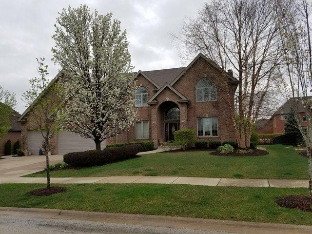 14113 S 86th Place, Orland Park, IL 60462 (MLS #10115079) :: The Wexler Group at Keller Williams Preferred Realty
