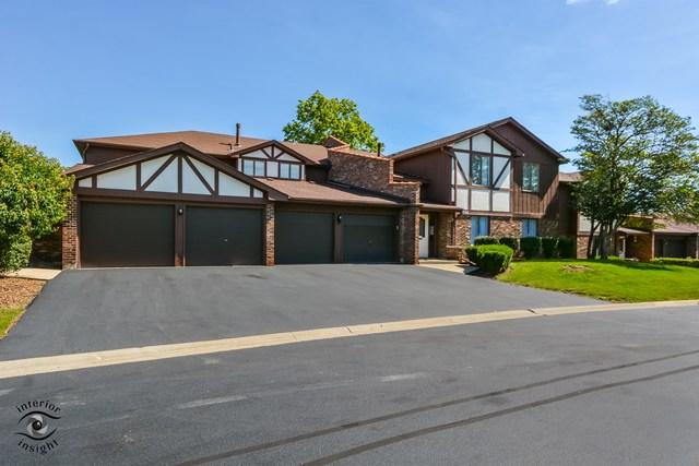 9748 Mill Drive East Drive B2, Palos Park, IL 60464 (MLS #10115180) :: The Wexler Group at Keller Williams Preferred Realty