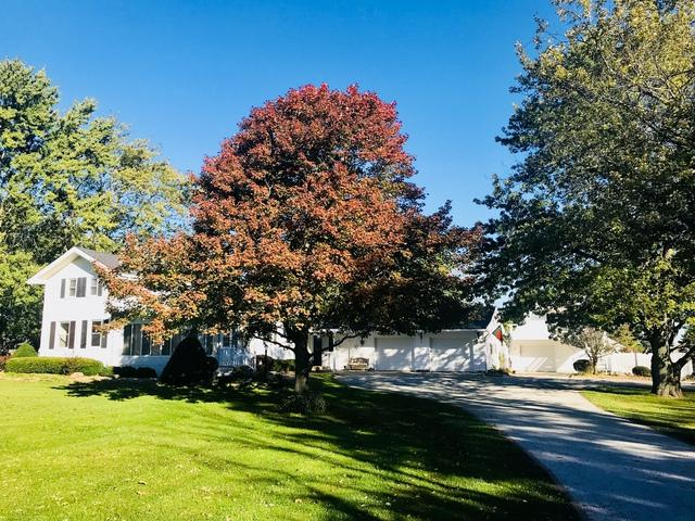 8041 E 9000N Road, Grant Park, IL 60940 (MLS #10115754) :: Domain Realty