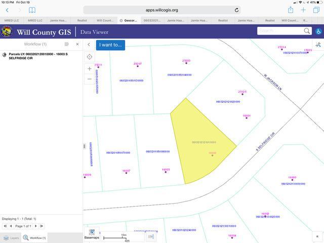 16003 S Selfridge Circle, Plainfield, IL 60586 (MLS #10115755) :: The Dena Furlow Team - Keller Williams Realty