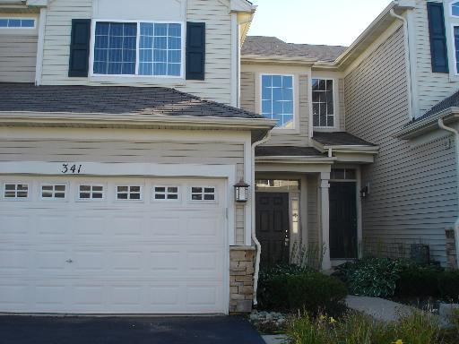 341 John M Boor Drive, Gilberts, IL 60136 (MLS #10115846) :: The Dena Furlow Team - Keller Williams Realty