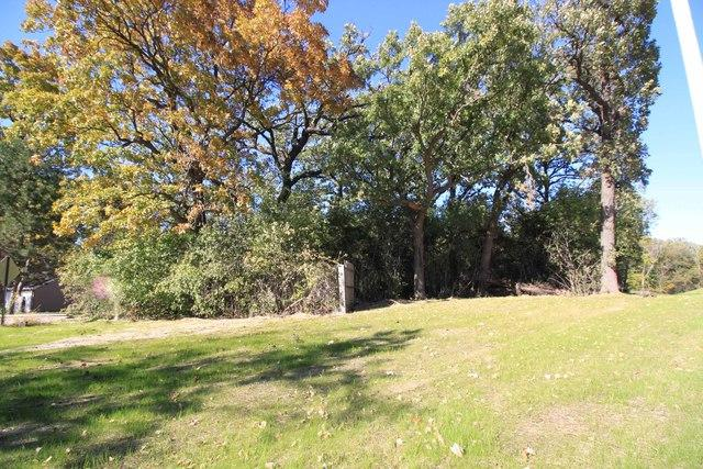 15W244 Forest Lane, Elmhurst, IL 60126 (MLS #10116364) :: The Dena Furlow Team - Keller Williams Realty