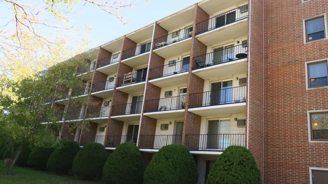 255 N West Avenue #405, Elmhurst, IL 60126 (MLS #10116490) :: The Dena Furlow Team - Keller Williams Realty
