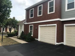 41 S Stonington Drive #191, Palatine, IL 60074 (MLS #10116850) :: The Jacobs Group