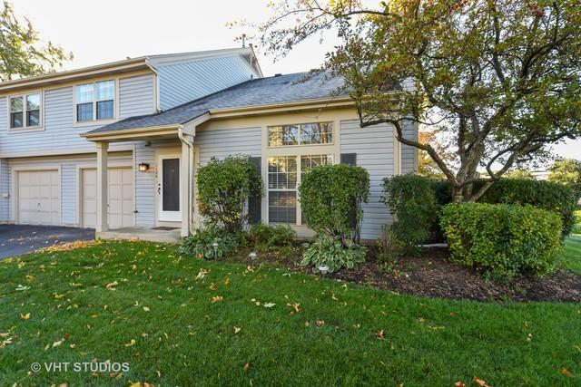 1120 N Knollwood Drive, Palatine, IL 60067 (MLS #10117023) :: The Jacobs Group