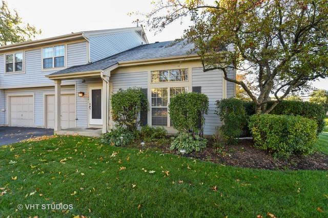 1120 N Knollwood Drive, Palatine, IL 60067 (MLS #10117023) :: Baz Realty Network | Keller Williams Preferred Realty