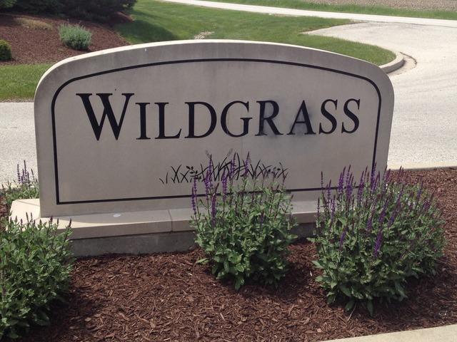 26504 Wildgrass Turn - Photo 1