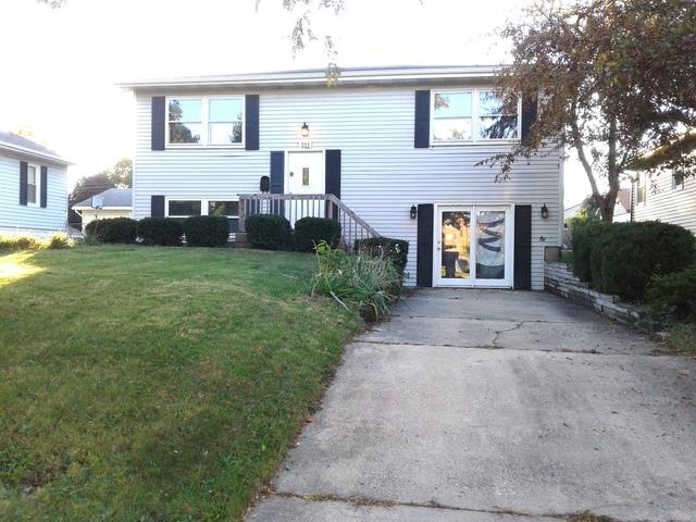 111 Stryker Avenue, Joliet, IL 60436 (MLS #10117470) :: The Dena Furlow Team - Keller Williams Realty