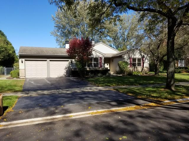 928 W Partridge Drive, Palatine, IL 60067 (MLS #10117639) :: The Jacobs Group