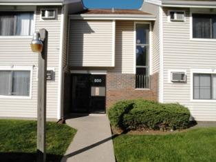 800 N Bayside Drive #6, Palatine, IL 60074 (MLS #10117835) :: Property Consultants Realty