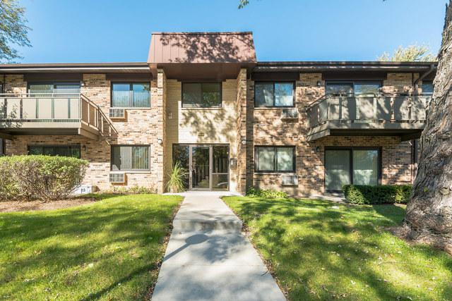 2630 N Windsor Drive #201, Arlington Heights, IL 60004 (MLS #10117984) :: The Jacobs Group
