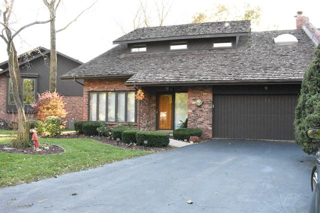 45 Lucas Drive, Palos Hills, IL 60465 (MLS #10118050) :: Century 21 Affiliated