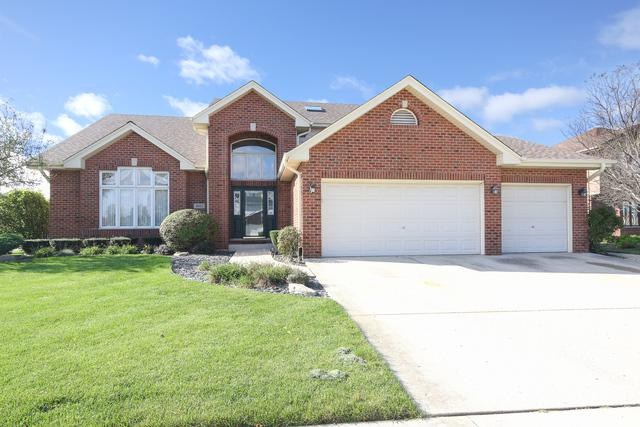 8119 Glenbrook Place, Tinley Park, IL 60477 (MLS #10118061) :: Century 21 Affiliated