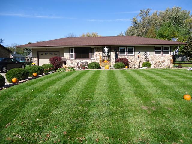 110 Saunders Street, Dalzell, IL 61320 (MLS #10118746) :: Baz Realty Network | Keller Williams Preferred Realty
