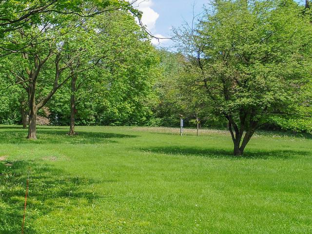 5711 Riverview Drive, Lisle, IL 60532 (MLS #10119104) :: Baz Realty Network | Keller Williams Elite