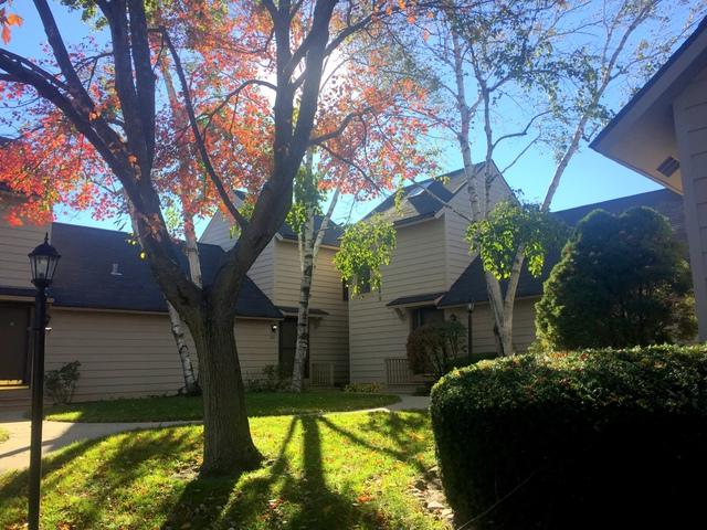 731 Shepard Court, Gurnee, IL 60031 (MLS #10119715) :: Ani Real Estate