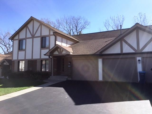 833 Thornton Court 1B, Schaumburg, IL 60193 (MLS #10119769) :: Baz Realty Network | Keller Williams Preferred Realty