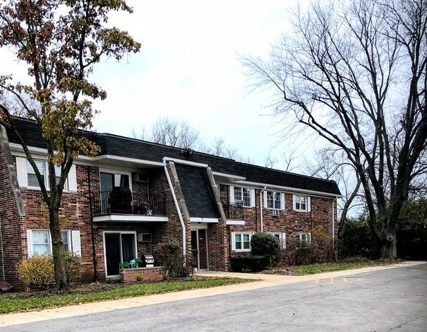 2427 Ogden Avenue #12, Downers Grove, IL 60515 (MLS #10120241) :: Ani Real Estate