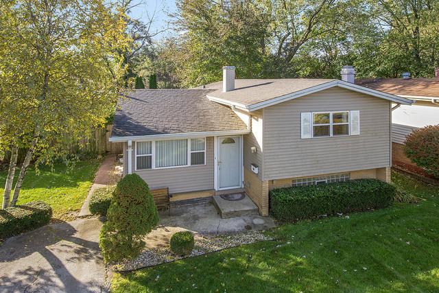 3515 218th Street, Matteson, IL 60443 (MLS #10121346) :: Ani Real Estate