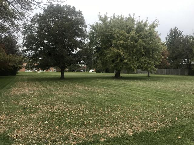 Lot 2 2nd Street, Herscher, IL 60941 (MLS #10121378) :: Baz Realty Network | Keller Williams Elite