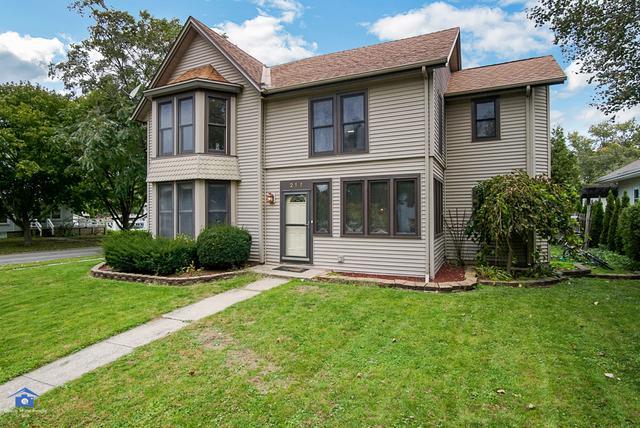 217 W Crawford Street, Peotone, IL 60468 (MLS #10121411) :: Ani Real Estate