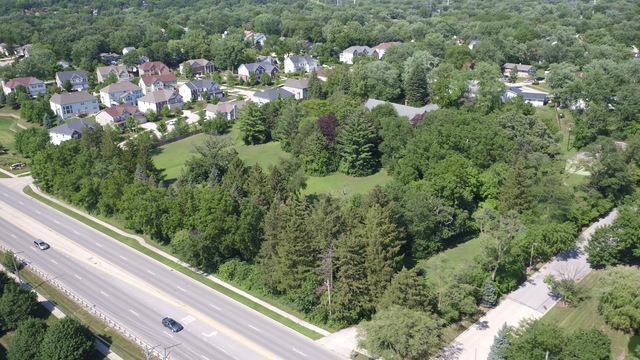 6699 Route 53, Woodridge, IL 60517 (MLS #10121699) :: The Dena Furlow Team - Keller Williams Realty