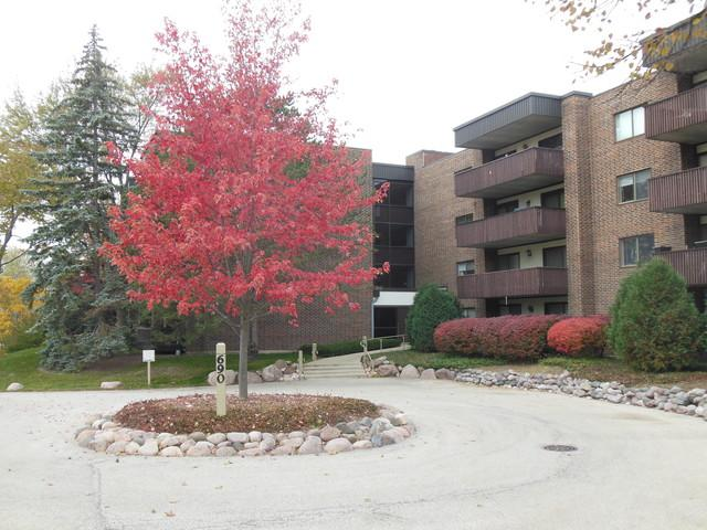 690 Chandler Road #310, Gurnee, IL 60031 (MLS #10121717) :: The Dena Furlow Team - Keller Williams Realty