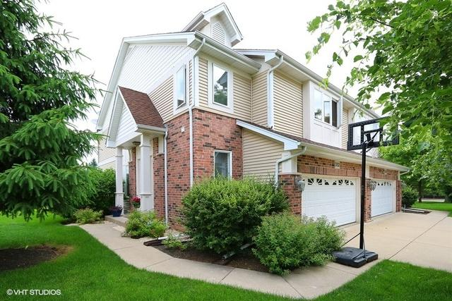 352 Park View Terrace, Buffalo Grove, IL 60089 (MLS #10122041) :: The Dena Furlow Team - Keller Williams Realty