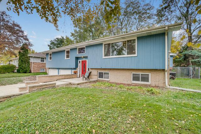 59 Neil Road, Sugar Grove, IL 60554 (MLS #10123732) :: The Dena Furlow Team - Keller Williams Realty