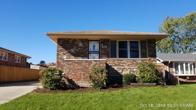 20072 Terrace Avenue, Lynwood, IL 60411 (MLS #10124187) :: Domain Realty