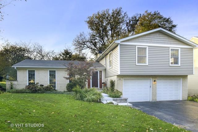 3624 Saratoga Avenue, Downers Grove, IL 60515 (MLS #10124863) :: Helen Oliveri Real Estate