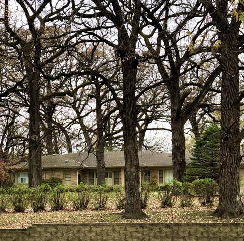 695 Larkdale Row, Wauconda, IL 60084 (MLS #10125162) :: Ani Real Estate