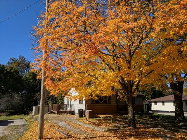 101 N Harrison Street, SIDNEY, IL 61877 (MLS #10125311) :: Littlefield Group