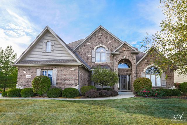 11646 Millennium Parkway, Plainfield, IL 60585 (MLS #10125345) :: Baz Realty Network | Keller Williams Preferred Realty