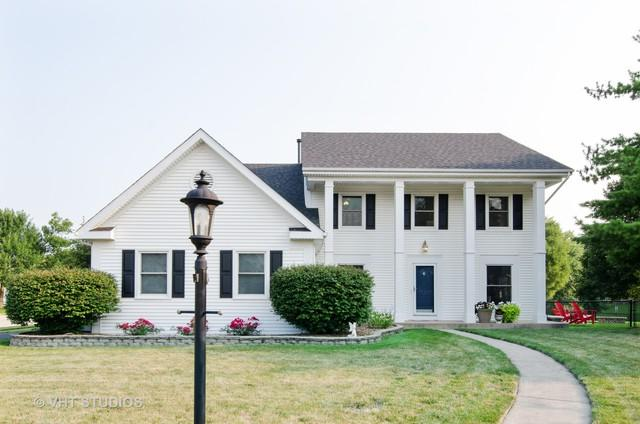 1 Chestnut Court, Cary, IL 60013 (MLS #10126141) :: Baz Realty Network | Keller Williams Preferred Realty