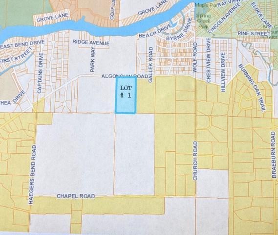 Lot 1 Algonquin River Road, Fox River Grove, IL 60021 (MLS #10126441) :: The Spaniak Team
