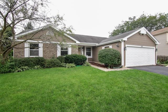 1029 Pear Tree Lane, Wheeling, IL 60090 (MLS #10126603) :: Ani Real Estate