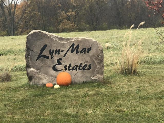 9 Lynmar Court, MONTICELLO, IL 61856 (MLS #10126647) :: Littlefield Group