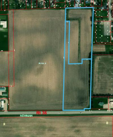 2548 Cr N 2650 E Road, NEWMAN, IL 61942 (MLS #10127502) :: Domain Realty