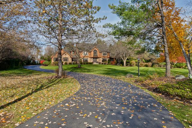 6515 High Meadow Court, Long Grove, IL 60047 (MLS #10128648) :: Helen Oliveri Real Estate