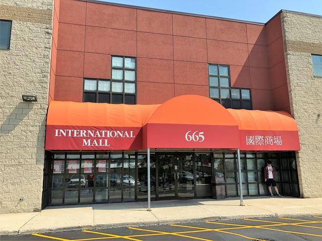 665 Pasquinelli Drive #210, Westmont, IL 60559 (MLS #10128891) :: Ani Real Estate