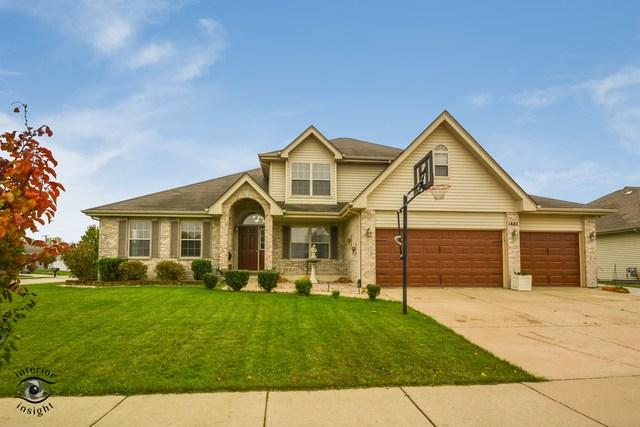 1442 Eagles Landing N, Manteno, IL 60950 (MLS #10129490) :: Ani Real Estate