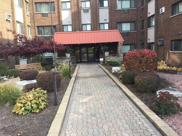 1919 S Wolf Road #221, Hillside, IL 60162 (MLS #10129846) :: Ani Real Estate