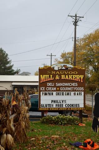 1530 Mulholland Street, Nauvoo, IL 62354 (MLS #10129903) :: Ani Real Estate