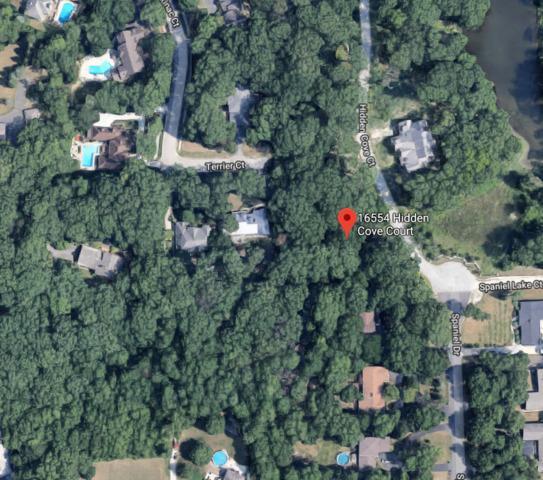 16554 Hidden Cove Court, Homer Glen, IL 60491 (MLS #10130061) :: Ani Real Estate