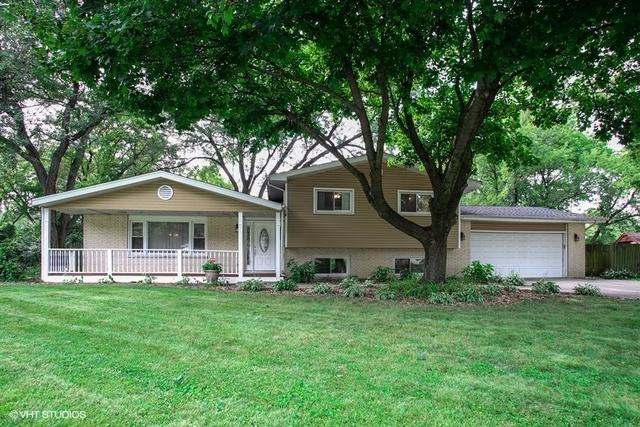 4N146 Niles Avenue, Addison, IL 60101 (MLS #10130064) :: Ani Real Estate